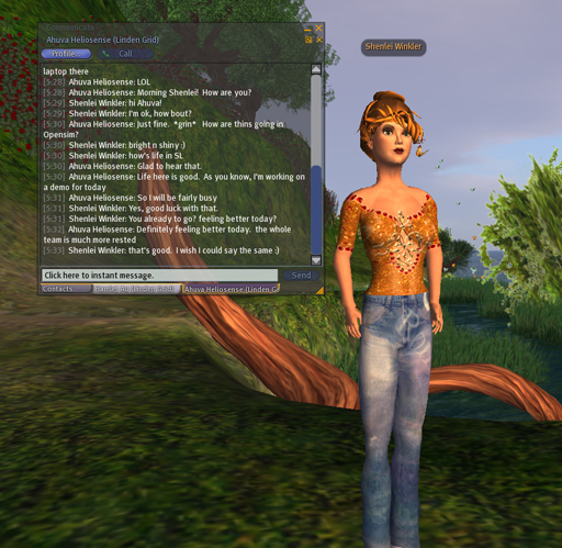 The view from within OpenSim