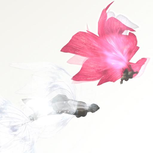 pinknwhite